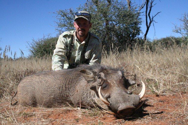warthog namabia safari corporation